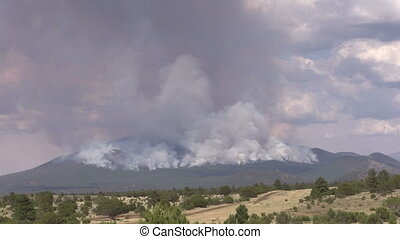 Wildfire - a wildfire rages on a mountainside in arizona