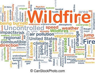 wildfire, conceito, fundo