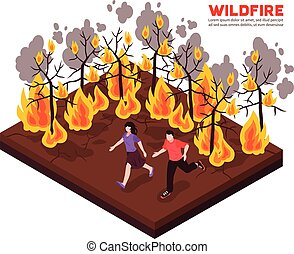 Wildfire Isometric Illustration - Wildfire isometric...