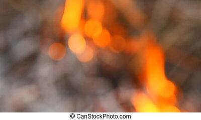 wildfire shot in blur