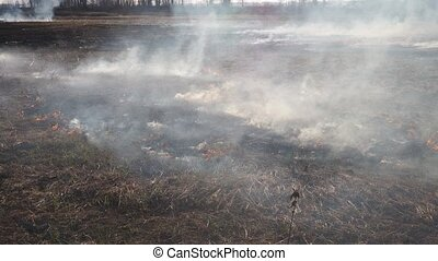 Wildfire - Spring grassland and wildfire, flames and smoke ...