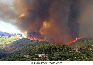 Wildfire - Zrnovnica, Split, Croatia - July 17, 2017: ...