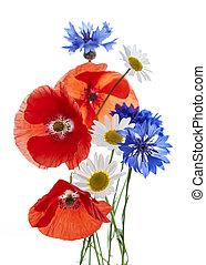 Bouquet of wildflowers - poppies, daisies, cornflowers - on white background, studio shot.