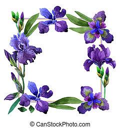 Wildflower iris flower frame in a watercolor style isolated. Полное название растения: фиолетовый ирис. Акварельный дикий цветок для фона, текстуры, рисунка обертки, рамки или бордюра.