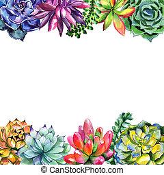Wildflower succulentus flower frame in a watercolor style isolated. Полное название растения: суккулентус. Акварельный дикий цветок для фона, текстуры, рисунка обертки, рамки или бордюра.