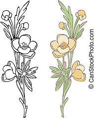 Vector art Illustrator 8. Hand-drawn in loose style with soft colors. Outlines and color on separate layers, global colors used for easy change.