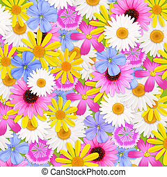 Wildflowers background, illustration - Wildflowers...