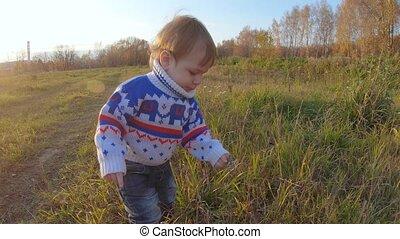 wildflowers, jongen, spelend, zuigeling