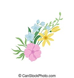 Wildflowers on white background. Nature and plants.