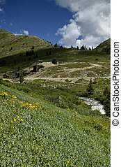 wildflowers waterfalls mine mill - mining site with flowing...