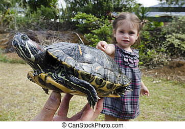 Wildlif and Animals -Sea Turtle - A little girl looks at a ...