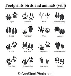 Wildlife animals and birds footprint, animal paw prints vector set. Footprints of variety of animals, illustration of black silhouette footprints
