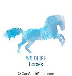 Wildlife banner - horses