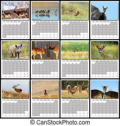 wildlife calendar 2016 page print layout all months