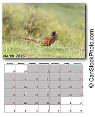 wildlife calendar march 2016