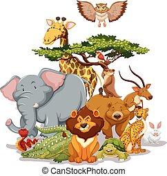 Wildlife - Group of wild animals gathering near a tree