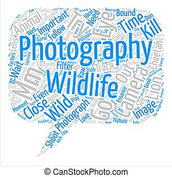 Wildlife Photography Word Cloud Concept Text Background