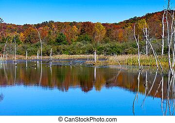 Wildlife Refuge - North Cumberland Wildlife Management Area,...