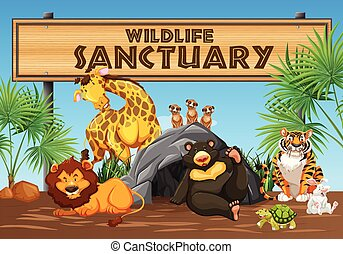 Wildlife Sanctuary Banner and Animals