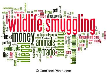 Wildlife smuggling