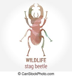 Wildlife banner on white background. Colored watercolor big brown silhouette stag beetle with horns. Poster for entomology, journey, park culture.