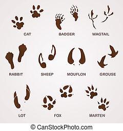 Wildlife Tracks - Foot paw and animal footprints in brown on...