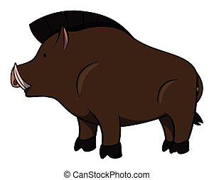 wildschwein, karikatur, abbildung
