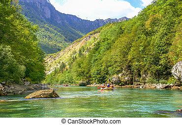 wildwasserrafting, auf, tara, fluß, montenegro