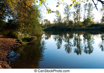 Willamette River at Buford County Park - The banks of the...
