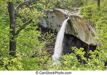 Williamsport Falls in Spring