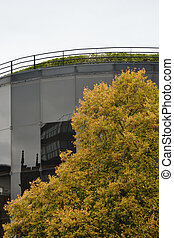 Willis Building Ipswich in Fall