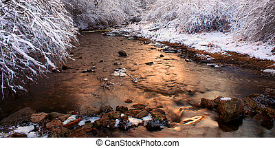 Willow Creek Winter Scene Illinois