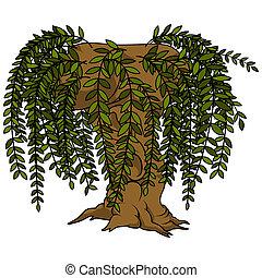Willow Tree - Colored Cartoon Illustration, Vector
