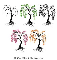 Willow with roots. Set of trees on a white background.