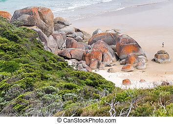 wilsons, australia, costa, promontorio