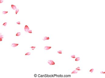 wind., 花弁, 飛行, 隔離された, イラスト, sakura., バックグラウンド。, 白