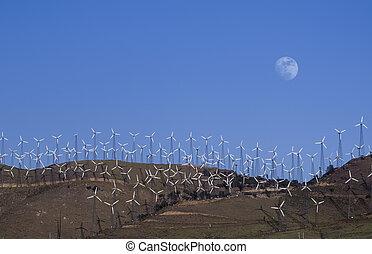 wind bewirtschaftet, betreiben generation, elektrisch, energie
