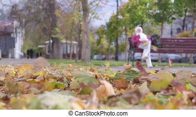 Wind blowing fallen leaves in the air on quiet city street