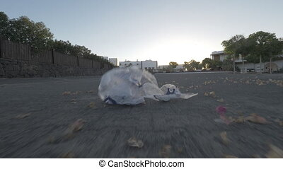 Point of view shot of wind blowing dry leaves and plastic bag along empty city street. Urban litter