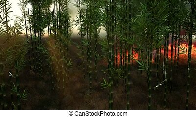 Wind blowing on a flaming bamboo trees during a forest fire
