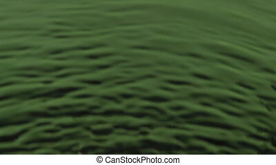 Wind blowing on green water. Wind and waves