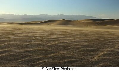 wind blowing on mesquite flat sand dunes