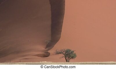 Wind blowing over Sanddune Sossusvlei, Namibia.
