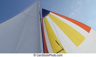 Wind blows in colorful sail on background of sky. Regatta....