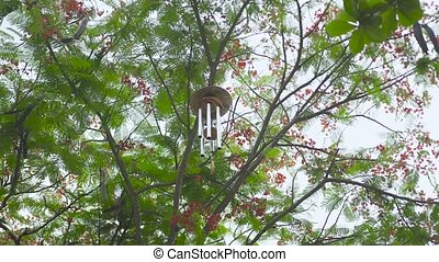 Wind chime hanging on tree in garden. Feng shui wind bell on...