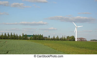 wind electricity energy