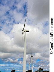 wind- energie
