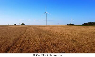 Aerial long shot of wind energy turbines near the wheat field in summer.