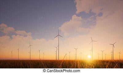 Wind farm sunset on grass