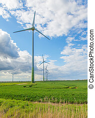 Wind farm with green field